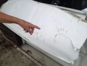 Bear Attacks Garage Door in Naramata